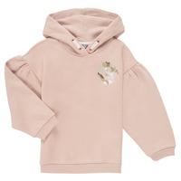 Vêtements Fille Sweats Puma ALPHA HOODIE Rose