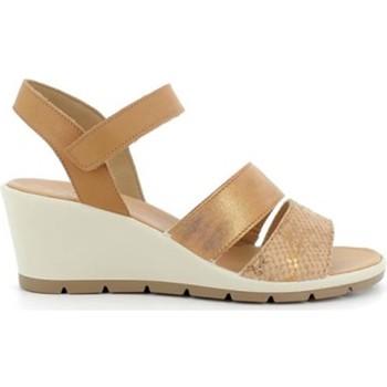 Chaussures Femme Sandales et Nu-pieds Enval VALLEVERDE Tronchetto 46103 scarpe stivaletto pelle donna nero Beige
