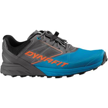 Chaussures Homme Running / trail Dynafit Alpine Grau