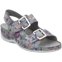 Chaussures Femme Sandales et Nu-pieds Westland By Josef Seibel CHOLET 21 ESTAMPADA Sandalias