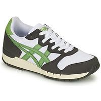 Chaussures Baskets basses Onitsuka Tiger ALVARADO Vert / Noir / Blanc
