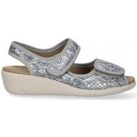 Chaussures Femme Sandales et Nu-pieds Garzon 54983 Gris