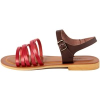 Chaussures Femme Sandales et Nu-pieds Alice Carlotti  Multicolore