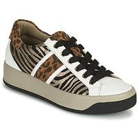 Chaussures Femme Baskets basses IgI&CO DONNA AVA Blanc / Marron