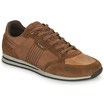 Chaussures Homme Baskets basses Geox EDIZIONE Marron