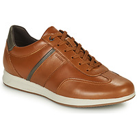 Chaussures Homme Baskets basses Geox AVERY Marron