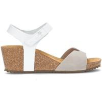 Chaussures Femme Sandales et Nu-pieds Interbios SANDALES  5649 GRISE