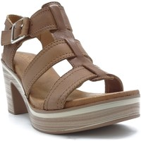 Chaussures Femme Sandales et Nu-pieds Carmela 06780102 CAMEL