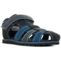Chaussures Homme Sandales et Nu-pieds Timberland POKEY PINE bleu