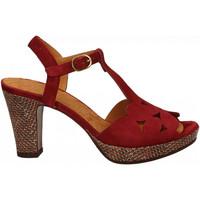 Chaussures Femme Sandales et Nu-pieds Chie Mihara EGEO granata