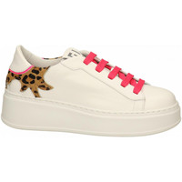 Chaussures Femme Baskets mode Gio + + leo-fuxia