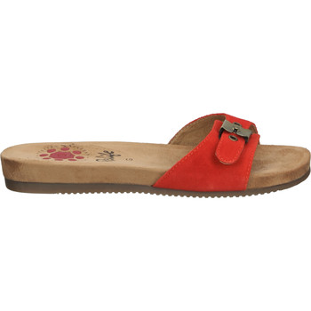 Chaussures Femme Mules Relife Mules Rot