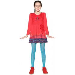 Vêtements Fille Robes courtes Desigual Robe Fille Niamey Rouge Rouge
