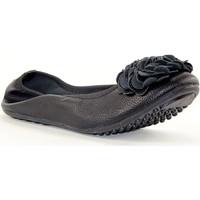 Chaussures Femme Ballerines / babies Sacha 3166 NOIR