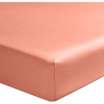 Maison & Déco Draps housse Home Collection Drap Housse 160x200 coton COTÉ DECO Rose