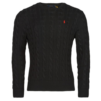 Vêtements Homme Pulls Polo Ralph Lauren SERINA Noir