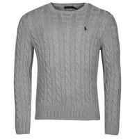 Vêtements Homme Pulls Polo Ralph Lauren SERINA Gris