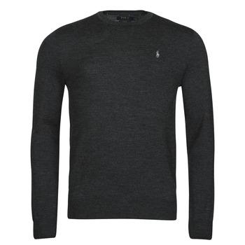 Vêtements Homme Pulls Polo Ralph Lauren AMIRAL Gris