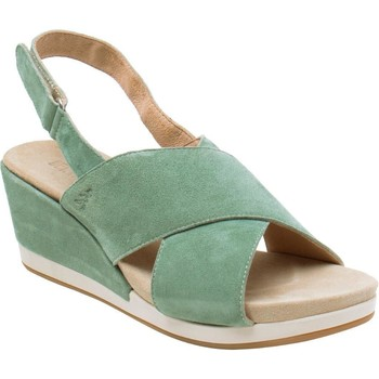 Chaussures Femme Sandales et Nu-pieds Benvado 43002009 Verde