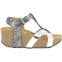 Chaussures Femme Sandales et Nu-pieds Plakton SO_CROSS ARGENTE