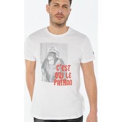 Vêtements Homme T-shirts manches courtes Japan Rags T-shirt tora blanc imprimé WHITE