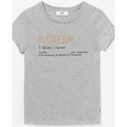Vêtements Fille T-shirts manches courtes Little Cerise T-shirt leilagi gris ASH GREY