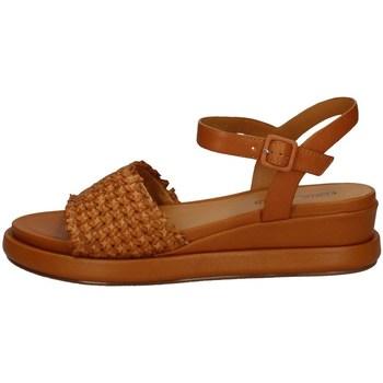Chaussures Femme Sandales et Nu-pieds Elvio Zanon EN3401 MOUTARDE
