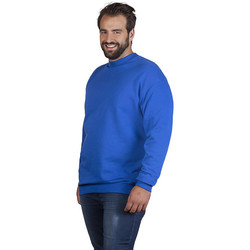 Vêtements Sweats Promodoro Sweat interlock unisexe grandes tailles pomotion bleu roi