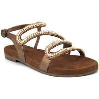 Chaussures Femme Sandales et Nu-pieds Santafe Christa Multicolore