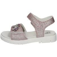 Chaussures Fille Sandales et Nu-pieds Lelli Kelly LK 1508 Rose