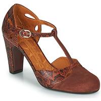 Chaussures Femme Escarpins Chie Mihara KUNA Marron