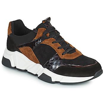 Chaussures Femme Baskets basses Regard KENO Noir / Marron