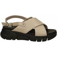 Chaussures Femme Sandales et Nu-pieds Frau CLOUD taupe