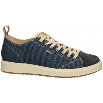 Chaussures Homme Baskets basses IgI&CO UNG 71271 blu