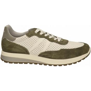 Chaussures Homme Baskets basses IgI&CO URO 71221 perla