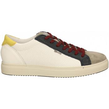 Chaussures Homme Baskets basses IgI&CO USH 71280 bianco