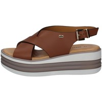 Chaussures Femme Sandales et Nu-pieds Valleverde 28101 CUIR
