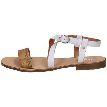 Chaussures Femme Sandales et Nu-pieds Alviero Martini E408/391E Autres