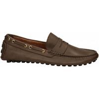 Chaussures Homme Mocassins Antica Cuoieria SOFTY BOTTOLATO testa-di-moro