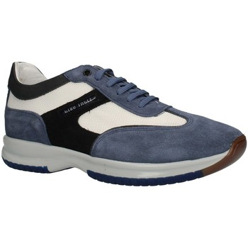 Chaussures Homme Baskets basses Gino Tagli 099CTPE21 haut Homme JEANS / BLANC / BLEU JEANS / BLANC / BLEU