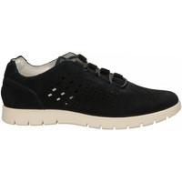 Chaussures Homme Baskets basses IgI&CO USX 71183 blu