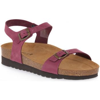 Chaussures Femme Sandales et Nu-pieds Grunland BORDO 11HOLA Rosso