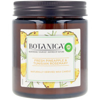 Maison & Déco Bougies, diffuseurs Air-Wick Botanica Bougie Pineapple & Tunisian Rosemary 205 Gr 205 g
