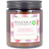 Maison & Déco Bougies, diffuseurs Air-Wick Botanica Bougie Rose & African Geranium 205 Gr