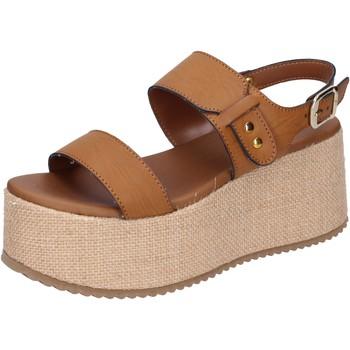 Chaussures Femme Sandales et Nu-pieds Sara Collection BJ921 Marron