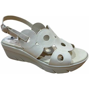 Chaussures Femme Sandales et Nu-pieds Susimoda SUSI3927sasso grigio