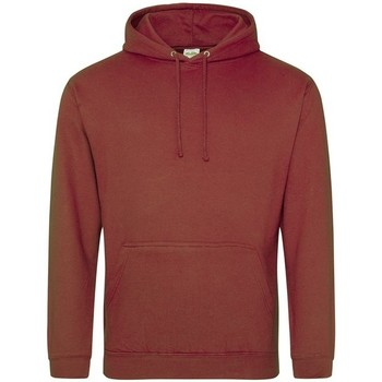 Vêtements Sweats Awdis College Marron rougeâtre