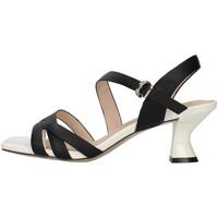 Chaussures Femme Sandales et Nu-pieds Luciano Barachini GL272A NOIR