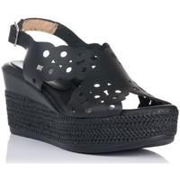 Chaussures Femme Sandales et Nu-pieds Zapp 7102 Noir