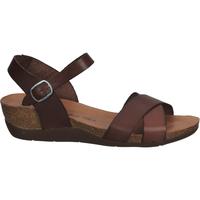 Chaussures Femme Sandales et Nu-pieds Cosmos Comfort Sandales Dunkelbraun